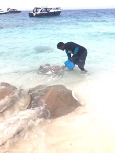 Malediven-Rochen-Fütterung-cultureandcream-blogpost