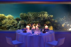 Huvafen-Fushi-Underwater-Dining-cultureandcream-blogpost