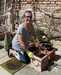gardening-garden-plants-terracotta-cultureandcream-blogpost
