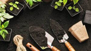 Ggarden-gardening-soil-tools-plants-cultureandcream-blogpost